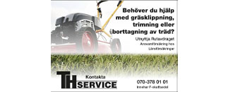 THservice