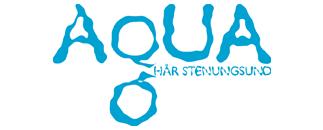 Aqua Hår