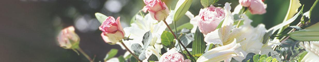 Fjällmans Begravning Olskroken - Blomsterhandel, Begravningsbyråer