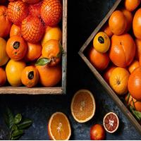 Hitta rätt i citrusdjungeln