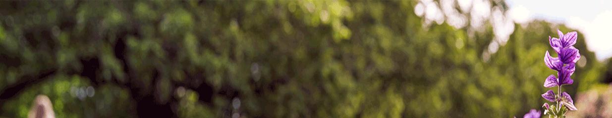 Örebro Kommun - Äldreomsorg, Personliga assistenter, Missbruksrådgivning & Behandlingshem, Offentliga myndigheter, Gymnasium, Gaturenhållning, Avlopps- & Avfallshantering, Grundskolor, Daghem, Förskolor & Fritidshem, Vuxenutbildningar