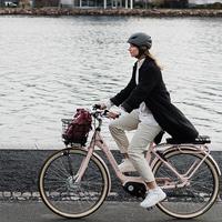 Cykelvård